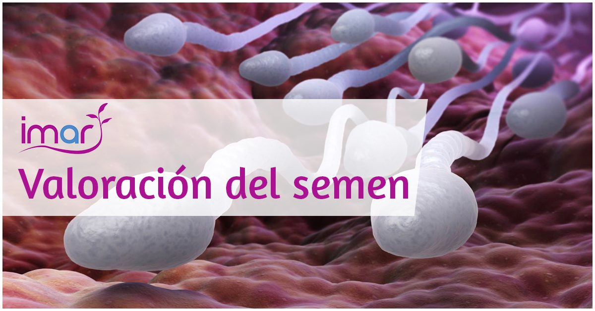 Valoración del semen - Clínicas de fertilidad Murcia