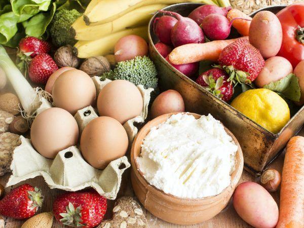 Nutrición en todas las etapas de la vida